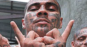 MS-13-Gang-sign1